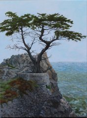 Carmel-Cypress-evening-copy.jpg