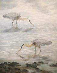 Charleston-Egrets.JPG